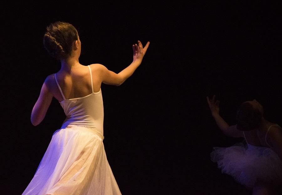 art danse human reflex ballet